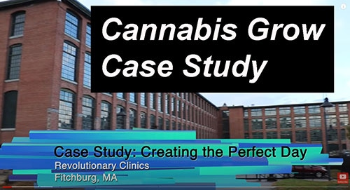 Creating the Perfect Day Cannabis Grow Case Study video thumbnail