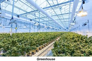 Greenhouse Indoor Grow Facility