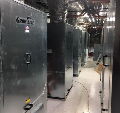 GrowAire units in Revolutionary Clinics cannabis grow facility